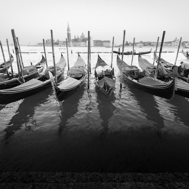 """""""Gondole, Venezia"""" stock image"""