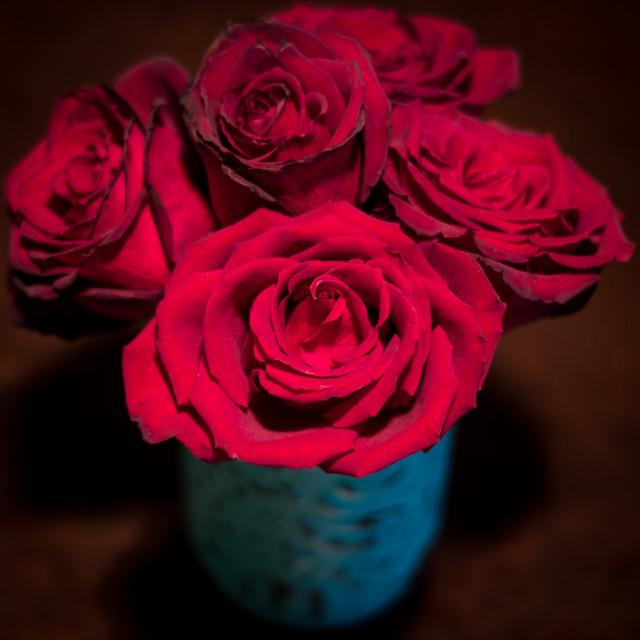 """""""Red Roses"""" stock image"""