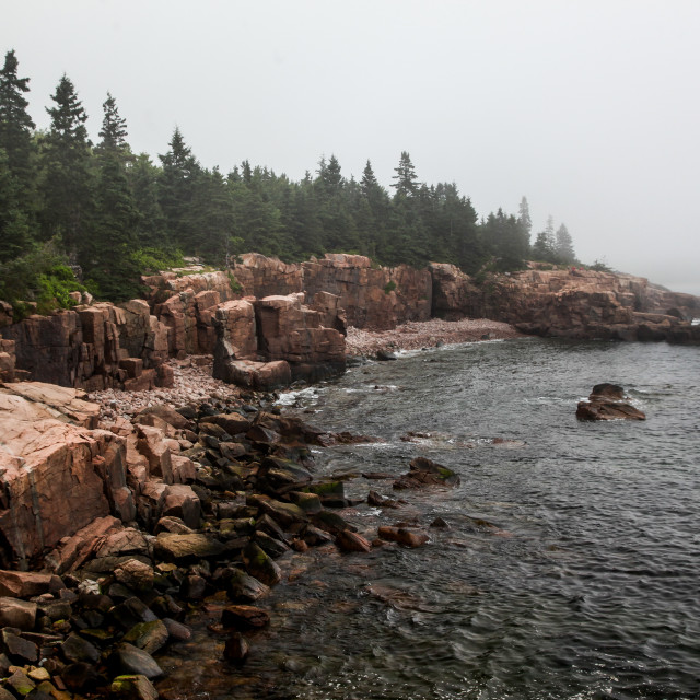 """Fogy day in Acadia NP"" stock image"