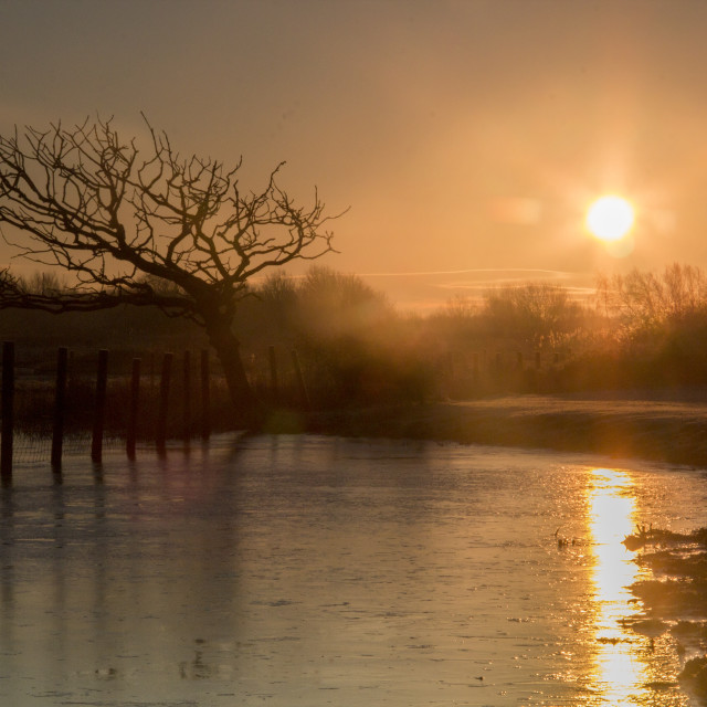 """Sunrise over flooded river"" stock image"