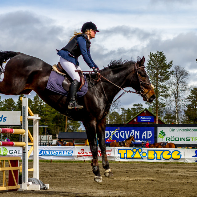 """horse riding Östersund"" stock image"