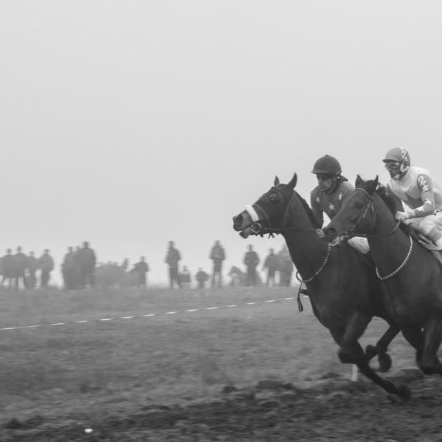 """Horse racing 1"" stock image"