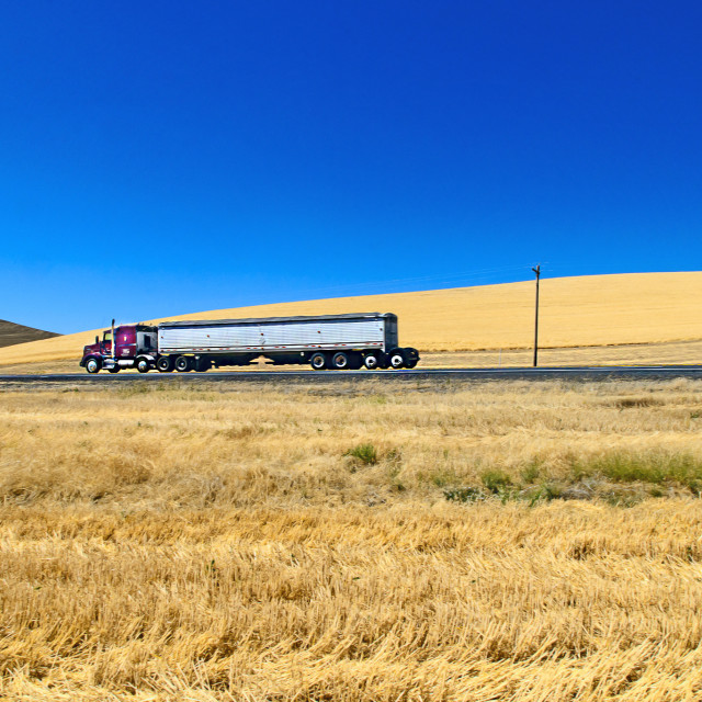 """Truck and grain fields"" stock image"