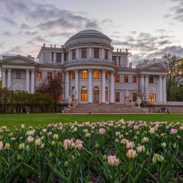 """Yelagin palace in Petersburg, Russia"" stock image"
