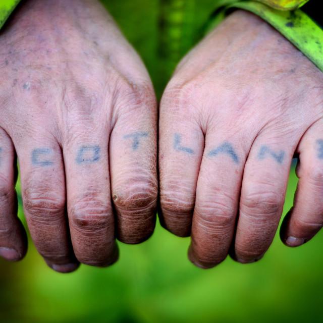 """Scotland Working Hands"" stock image"
