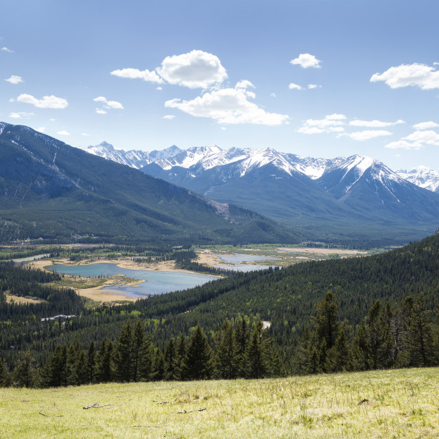 """Banff Canada high meadow"" stock image"