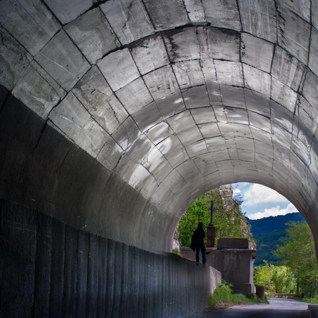 """Olt River Tunnel"" stock image"
