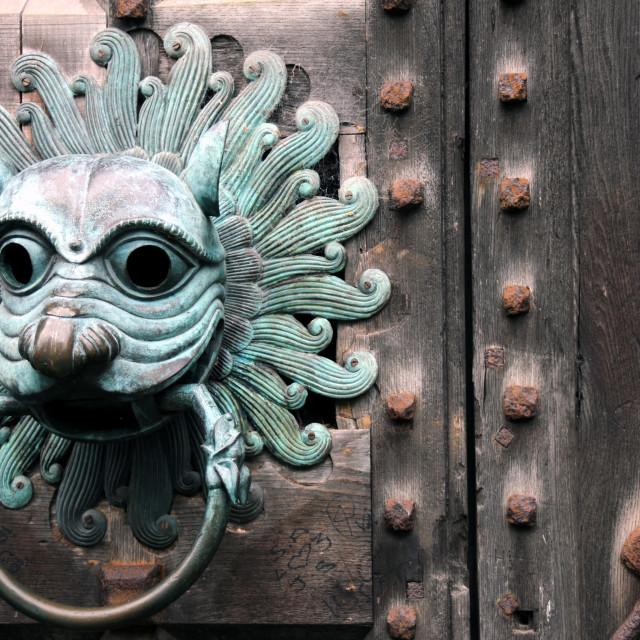 """""""Antique lion door knocker"""" stock image"""