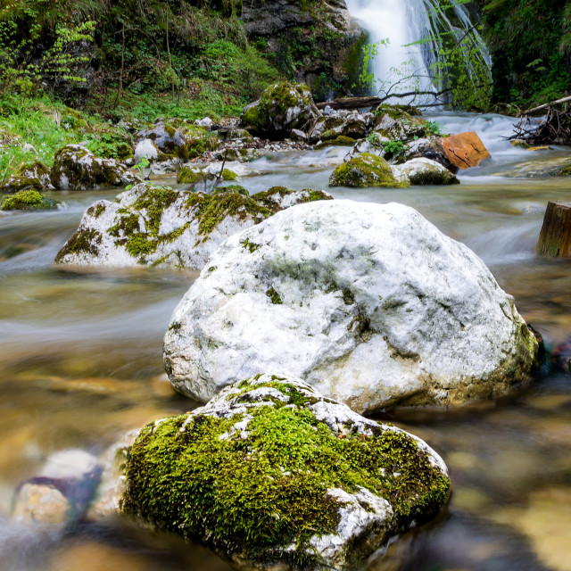 """""""Gently down the stream"""" stock image"""