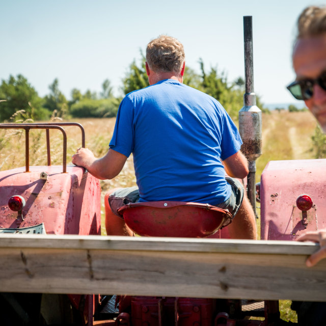 """Old Red Tractor"" stock image"