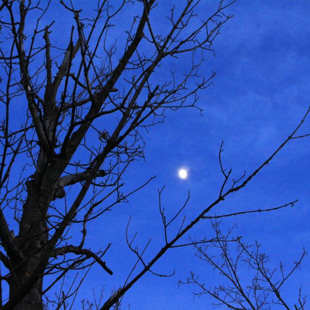"""pastel moon"" stock image"