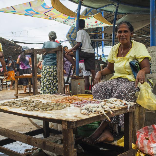 """Woman selling fish"" stock image"