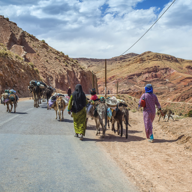 """Berber people with livestock on the road"" stock image"