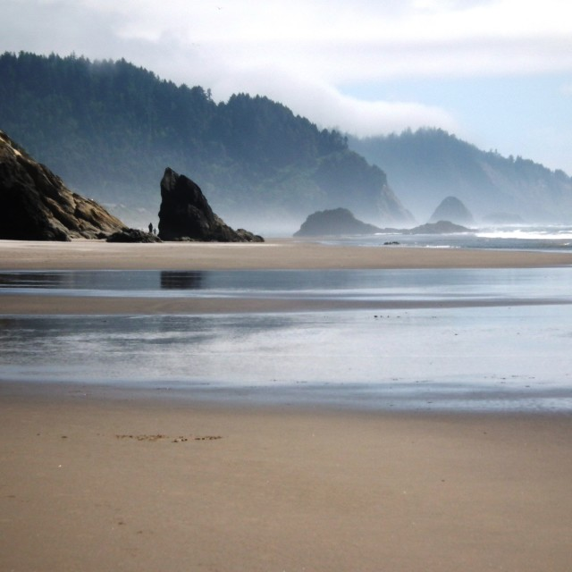 """Oregon coastline"" stock image"