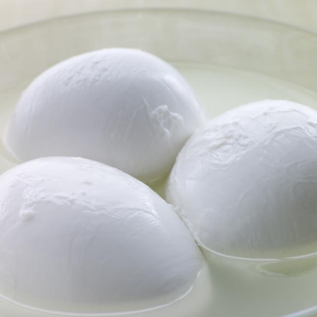 """""""Balls of Buffalo Mozzarella"""" stock image"""