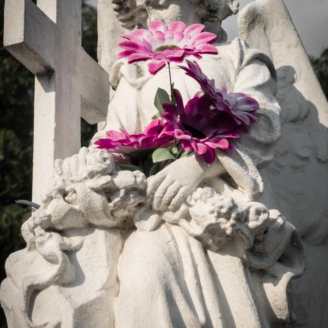 """""""Cementerio de Los Ilustres, El Salvador"""" stock image"""
