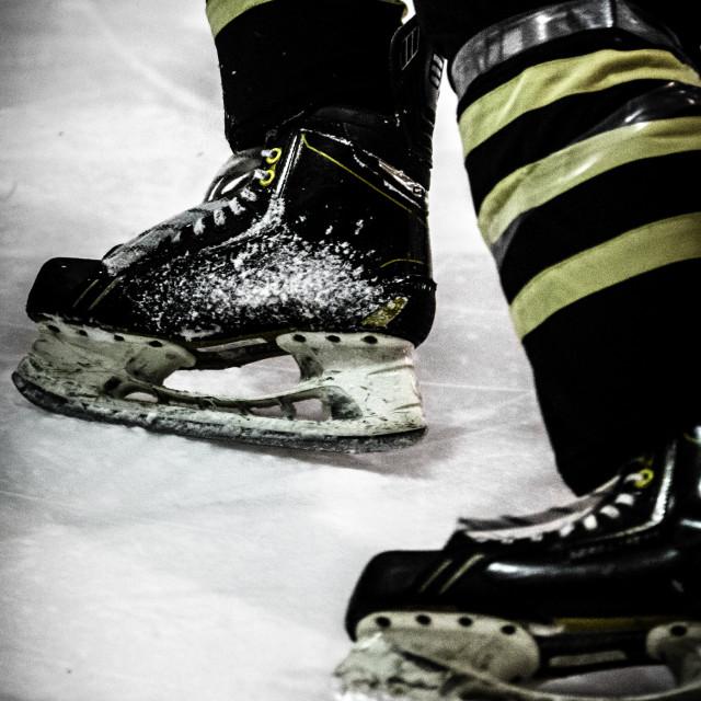 """Blades on Ice"" stock image"