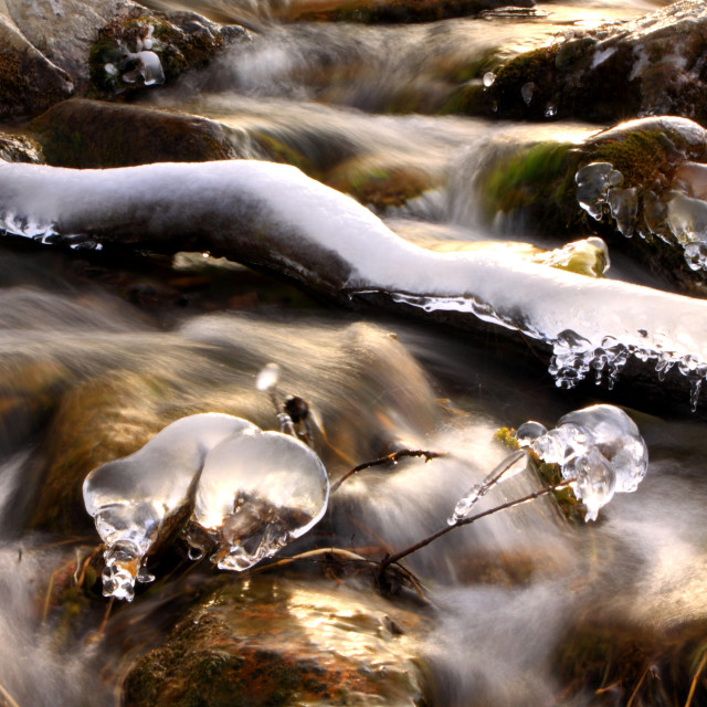 """""""spring thaw"""" stock image"""