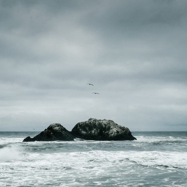 """San Francisco Seascape"" stock image"