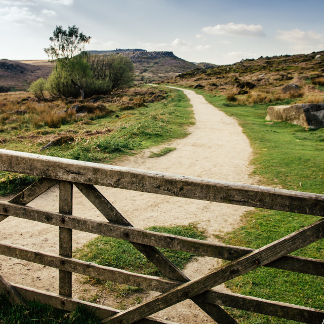 """""""The path to beauty"""" stock image"""