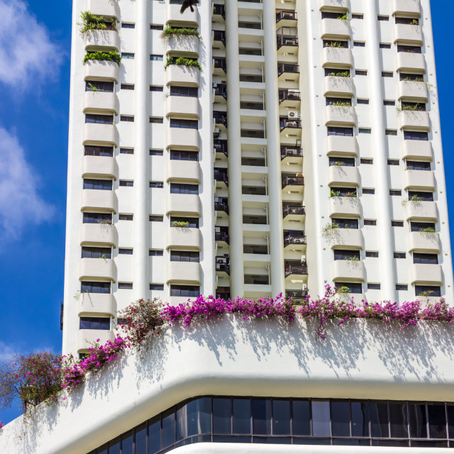 """Apartment building balconies."" stock image"
