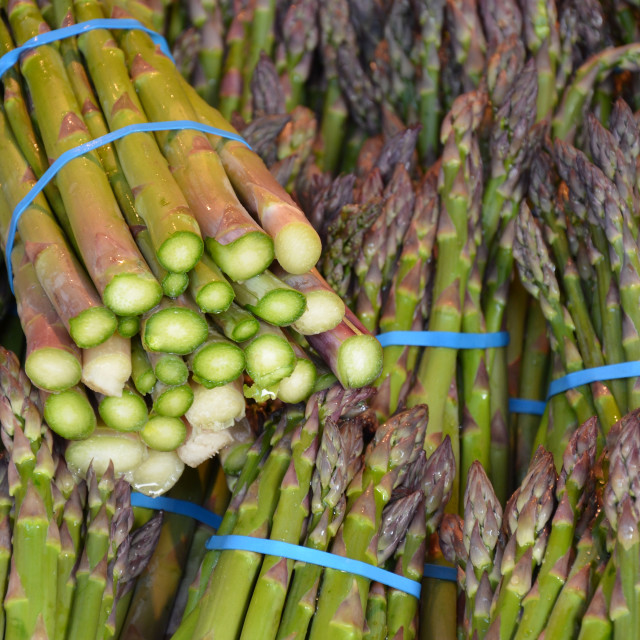 """Fresh green asparagus at market"" stock image"