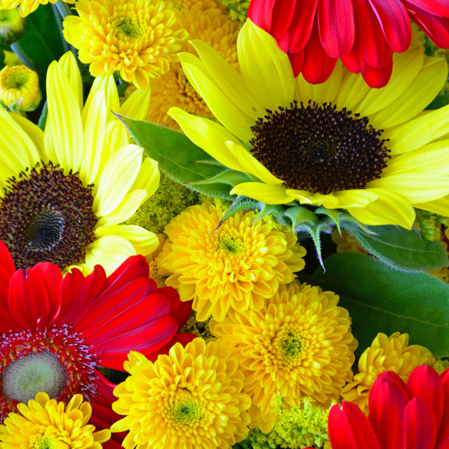 """Colorful autumn floral arrangement"" stock image"