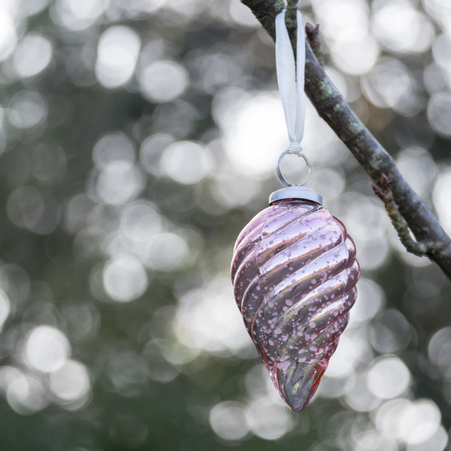 """Christmas bauble hanging outside"" stock image"