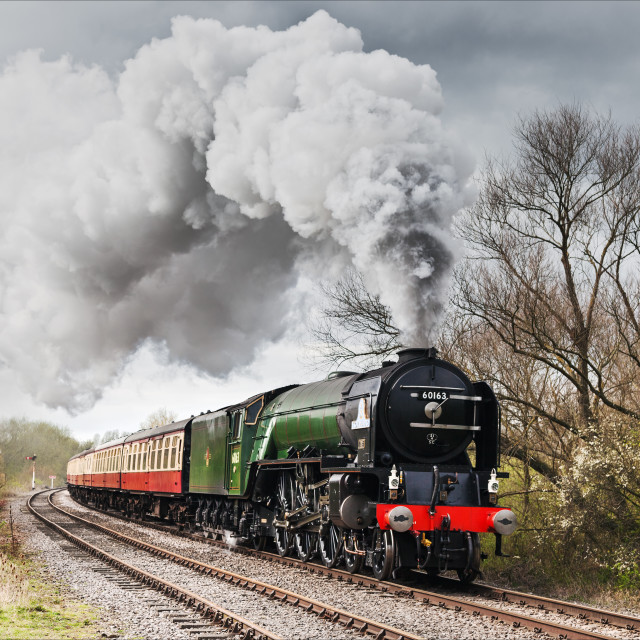 """Tornado powering past Longueville Junction"" stock image"