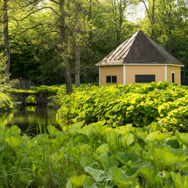 """Cottage by a stream"" stock image"