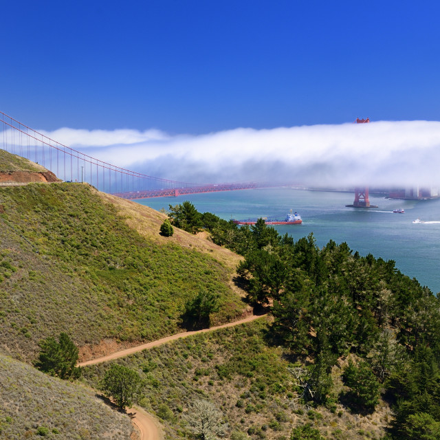 """Fog over the bridge"" stock image"
