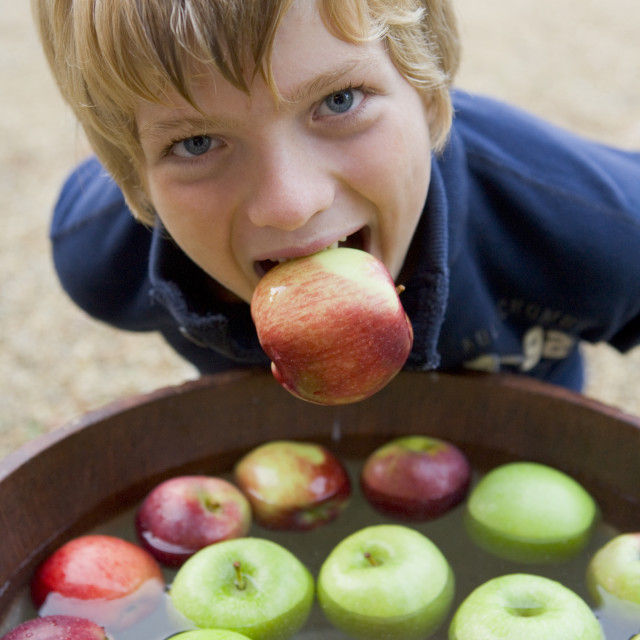 """""""Young boy bobbing for apples"""" stock image"""