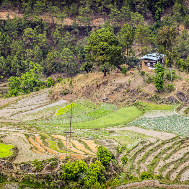 """Bhutanese valley farmhouse"" stock image"