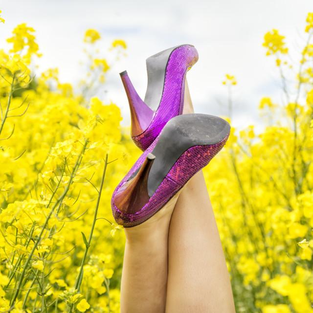 """Heels in Field"" stock image"