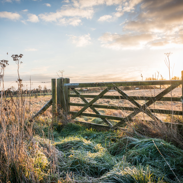 """Field and gate"" stock image"