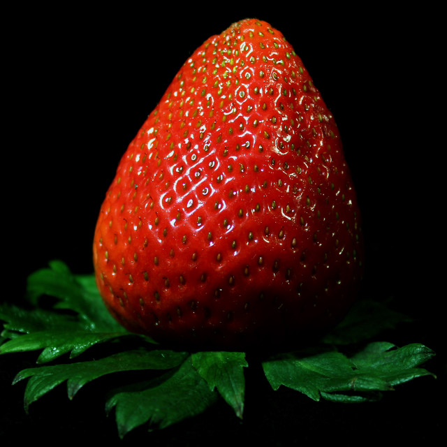 """A Simple Strawberry"" stock image"