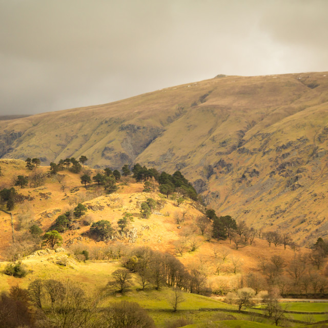 """Lake District View"" stock image"