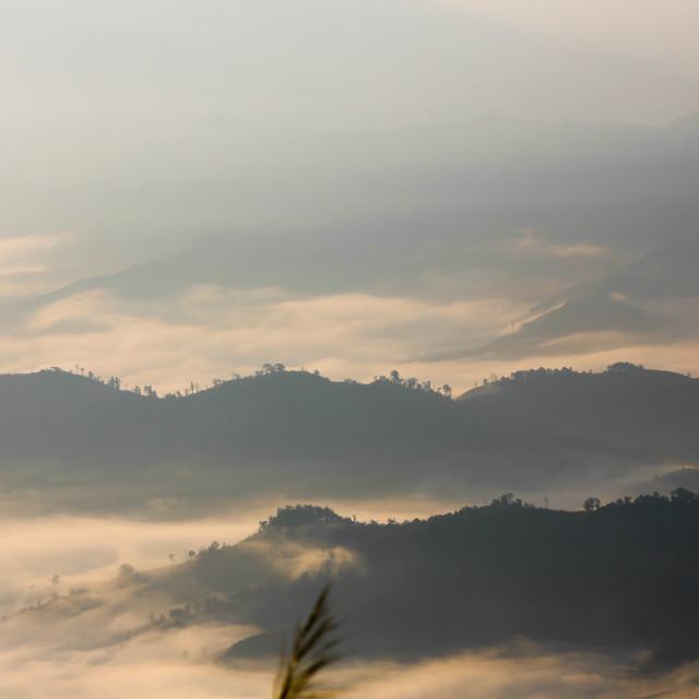 """Fog on the mountain"" stock image"