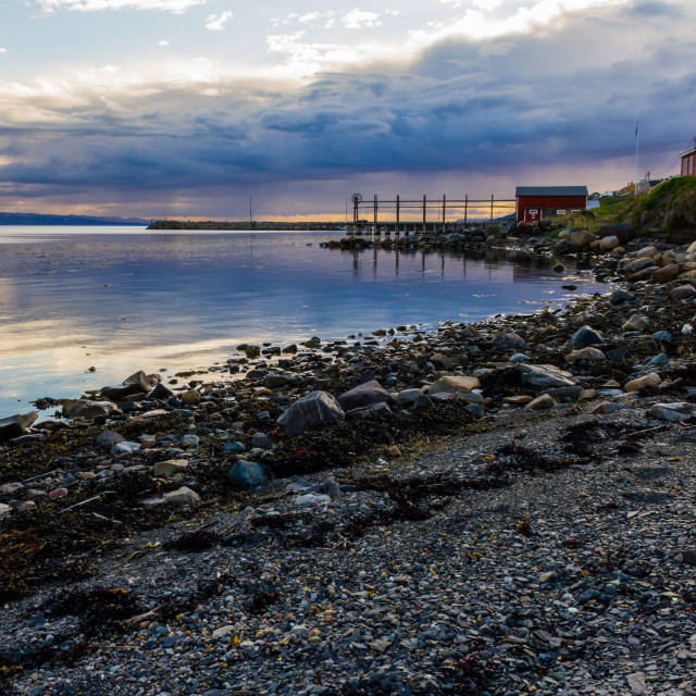 """Varanger shore"" stock image"