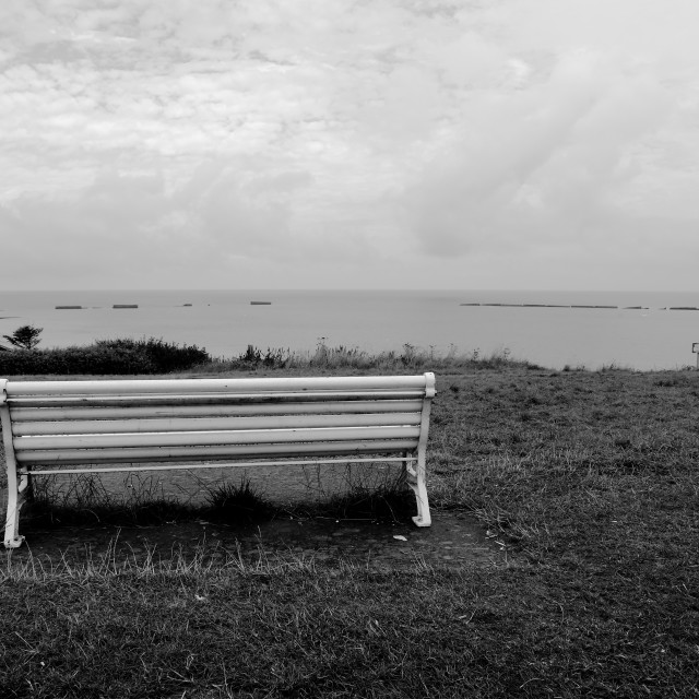 """""""The solitary bench"""" stock image"""
