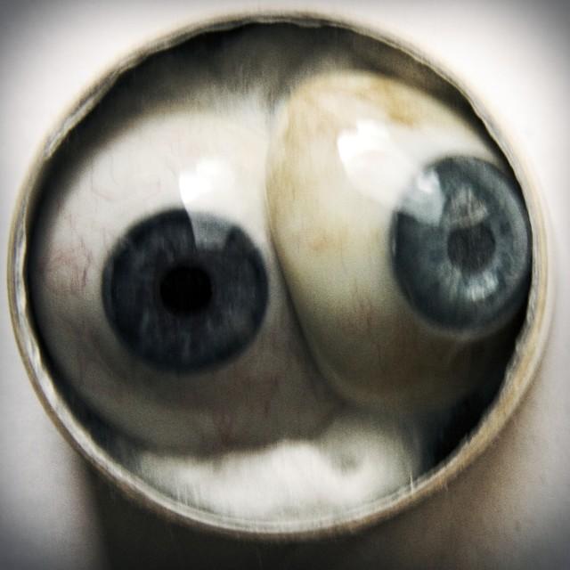"""""""Eye-eye"""" stock image"""