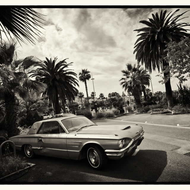 """Ford Thunderbird"" stock image"
