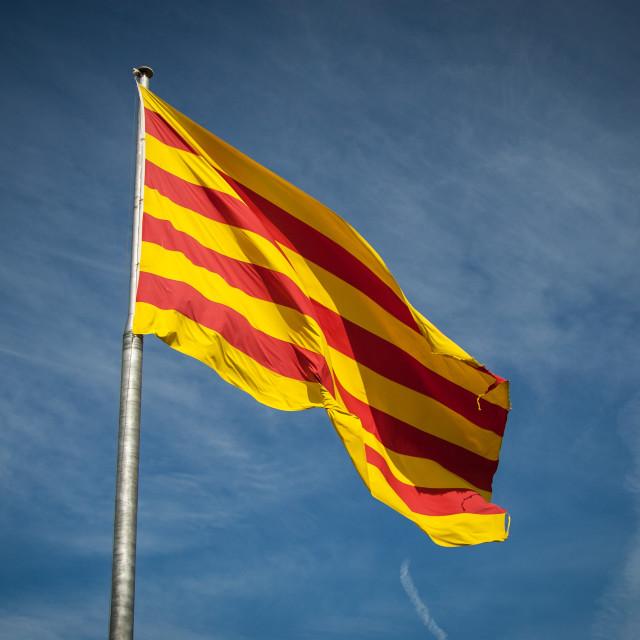 """""""Catalunyan flag"""" stock image"""