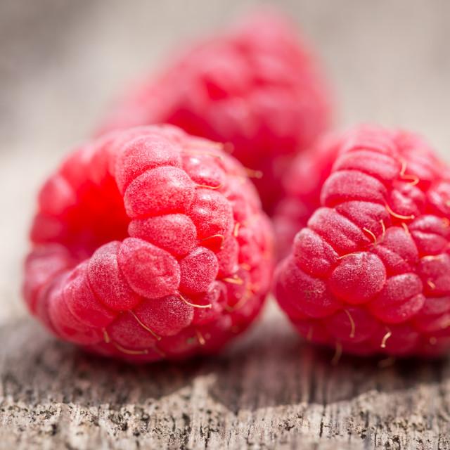 """""""Raspberries"""" stock image"""
