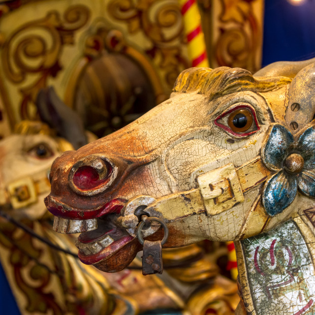 """""""Wooden horses at the fairground"""" stock image"""