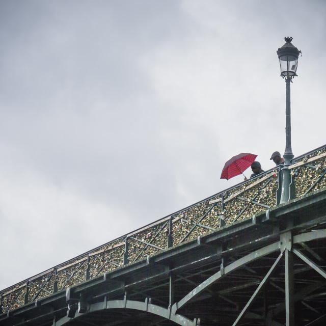 """""""A Bridge over the Seine"""" stock image"""