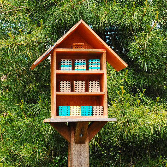 """Bee box"" stock image"