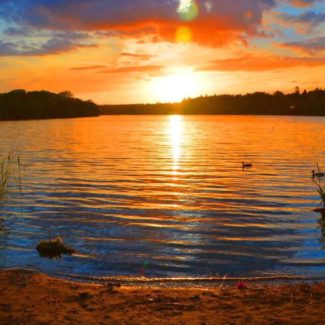 """""""Sunset at Virginia Water Lake"""" stock image"""