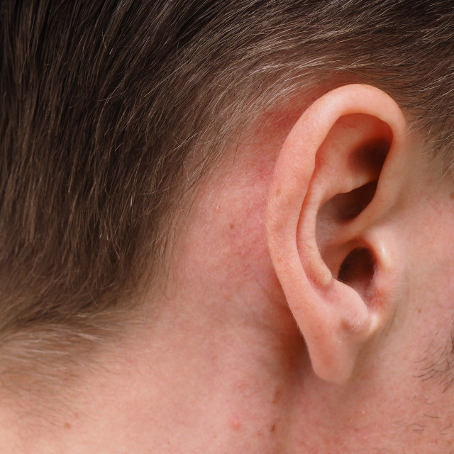 """""""Ear of caucasian male person at closeup"""" stock image"""