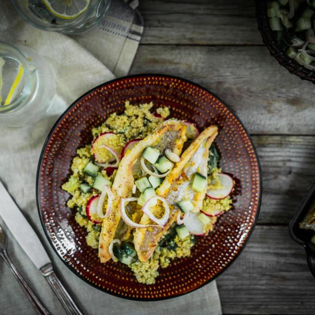 """Grilled catfish with quinoa and radish salad"" stock image"